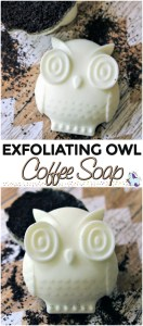 Exfoliating Owl Coffee Soap - 15 Handmade Christmas Gift Ideas from CanadianMomBlog.ca