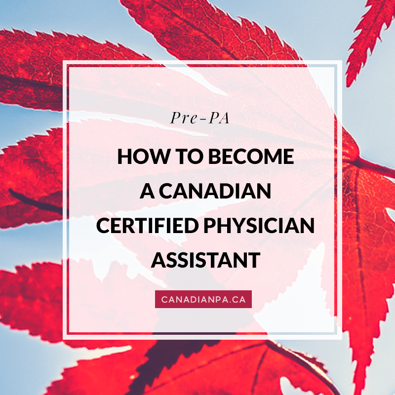 how to become a canadian certified physician assistant - the, Cephalic Vein