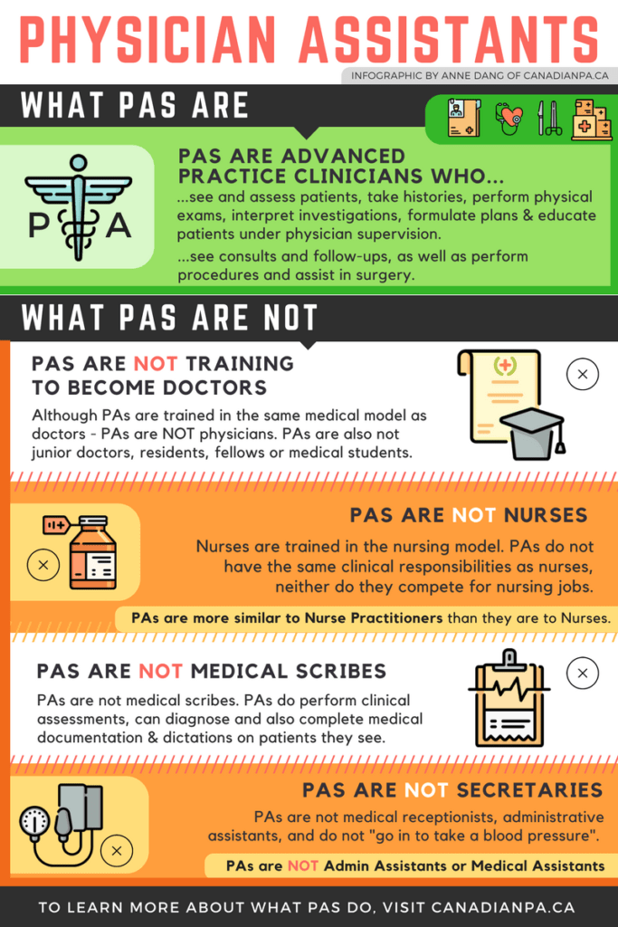 Physician Assistant Infographic