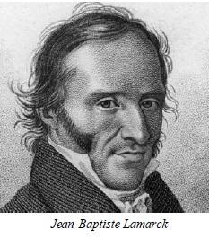 7-b-Lamarck