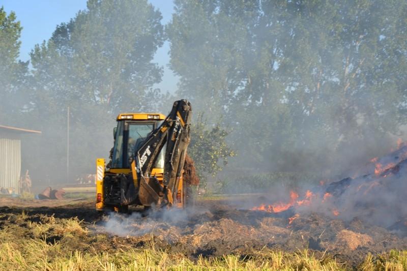 Biga'da hayvan damında yangın: 12 hayvan telef oldu