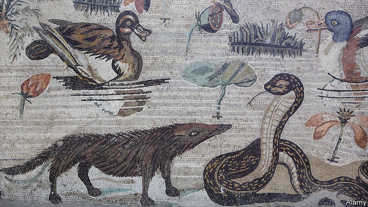 Mosaico en el que aparece representado un meloncillo procedente de la Casa del Fauno (Pompeya).