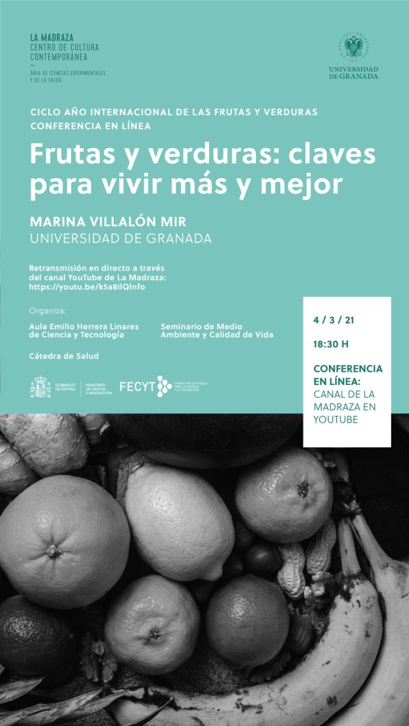 Cartel conferencia Marina Villalón