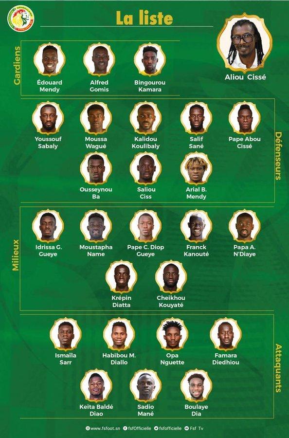 liste des lions sélectionnés