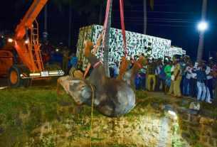 Image d'un éléphant tombé dans un puits en Inde.