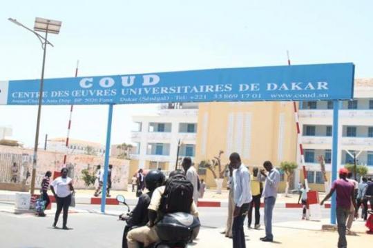 Université, le Saes-decrete-72h-de-greve