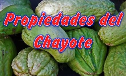 Propiedades del Chayote, Nutrientes del Chayote, contra el Sobrepeso y la Diabetes