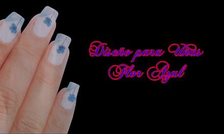 Fotos o Imagenes de Uñas Decoradas, Manicure, Diseño de Uñas Flor azul paso a paso 9