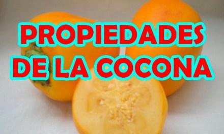 Propiedades de la Cocona, Dieta para Diabeticos y el Colesterol