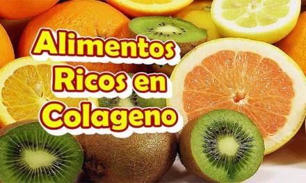 Alimentos Ricos en Colageno para la Piel, los Huesos, las Articulaciones y Frenar el Envejecimiento