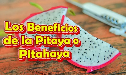 Los Beneficios de la Pitaya o Pitahaya o Fruta del Dragon Mexicana o Roja