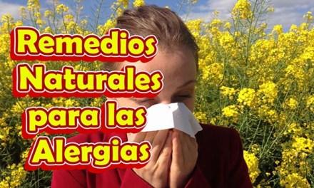 10 Remedios Naturales para las Alergias, Remedios Caseros