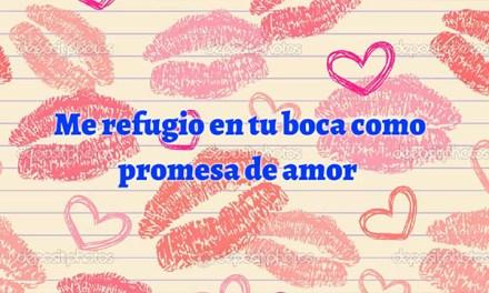 Poemas de Amor para la Mujer que Amo cortos, Feliz Dia de San Valentin