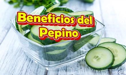 Los Beneficios del Pepino para la salud, para que sirve el Jugo de Pepino en Ayunas