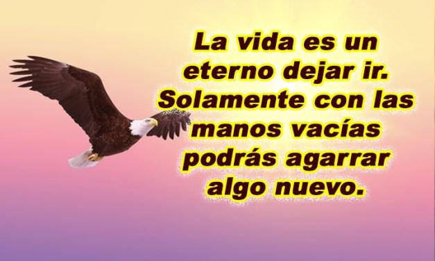 Imagenes con Frases Bonitas 93