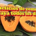 Beneficios de comer Papaya todos los dias en ayunas