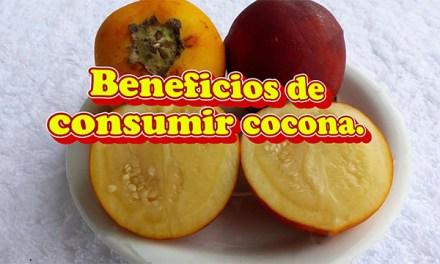 Beneficios de consumir cocona en la salud
