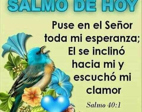 Imagenes con Frases Bonitas 150