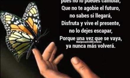 Imagenes con Frases Bonitas 165