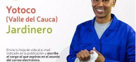 Aplica a esta vacante laboral en el municipio de Yotoco Valle (comparte).