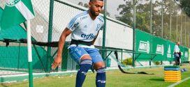 Miguel Ángel Borja ya superó su lesión y volvió a entrenar.