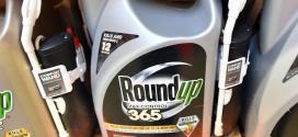 Monsanto, a pagar US$ 289 millones por efecto cancerígeno de glifosato