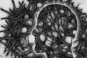 banco celulas neuronales