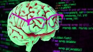 codigo cerebro programacion