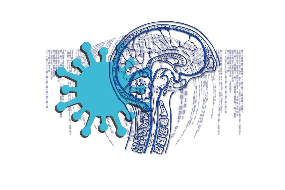 coronavirus cerebro