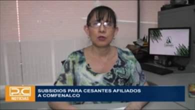 Photo of Tolimenses desempleados en el marco de la panemia podrán postularse para el subsidio al cesante en la página web de Comfenalco