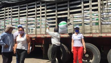 Photo of Mobiliario escolar e insumos agropecuarios para víctimas del Tolima
