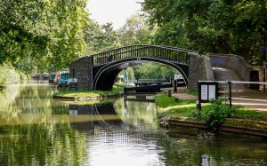 300 yards from the end of the canal, is Roving Bridge 243 with Isis Lock 46 leading off to the and n River Thames.