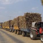 sugar factory,vehical traffic problem