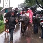 Flood related photo captions haliyal