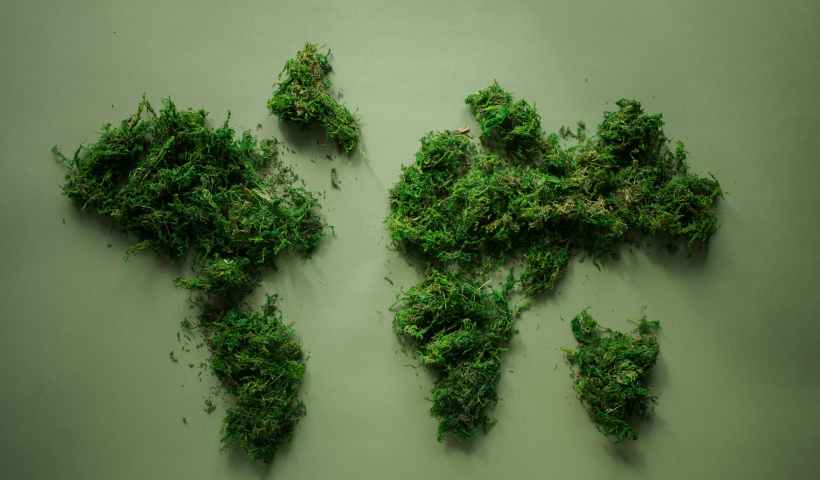 world map made of green plants