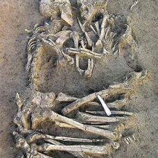 Dos Esqueletos Amor Verdadero