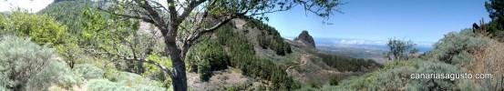 Pico de Las Nieves & Roque Nublo (13)