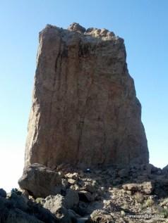 Pico de Las Nieves & Roque Nublo (6)