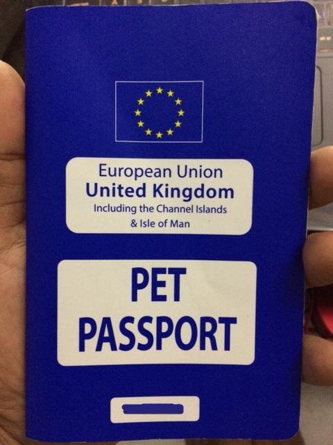 Pasaporte Intercomunitario Zelda