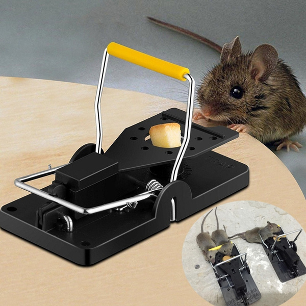 Best Rat Trap Heavy Duty Snap E Mouse Trap Easy Set Catching Catcher Mouse Trap Mice Trap Wish