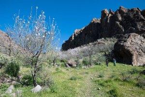 Canary-climbing-servicios-de-escalada-deportiva-islas-canarias-jorge-ortega-02