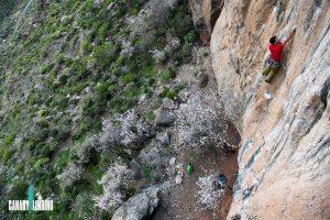 Canary-climbing-servicios-de-escalada-deportiva-islas-canarias-jorge-ortega-escalada-deportiva-02