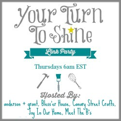 Your Turn To Shine link party.  Thursdays, 6am EST.  Hosted by Canary Street Crafts