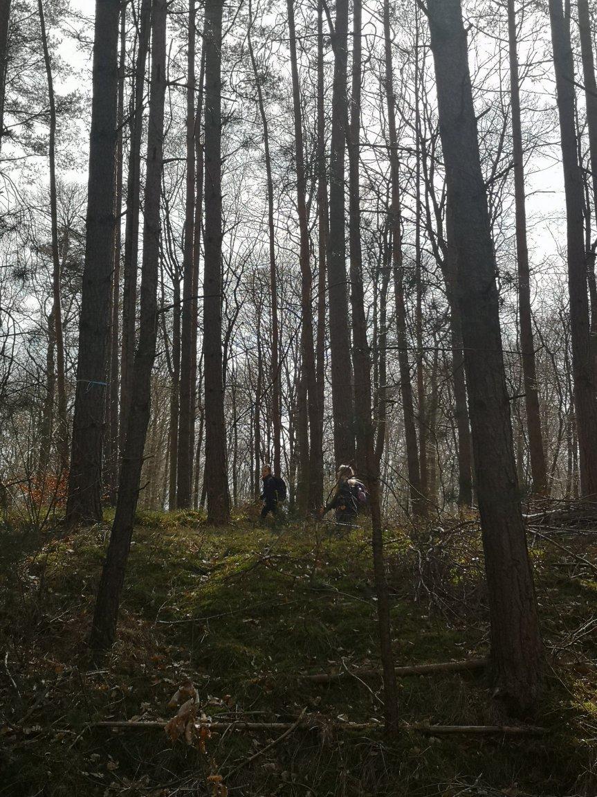 Vom Zauberwald, einer Drohne und der Einschulungsplanung; unser Wochenende