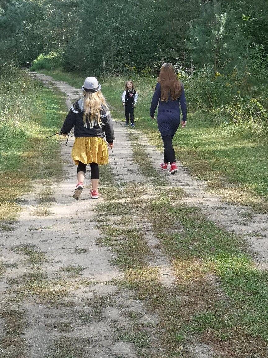 Vom Zauberwald, einer Eisenbahn und Plänen der Einhornbändigerin; unser Wochenende