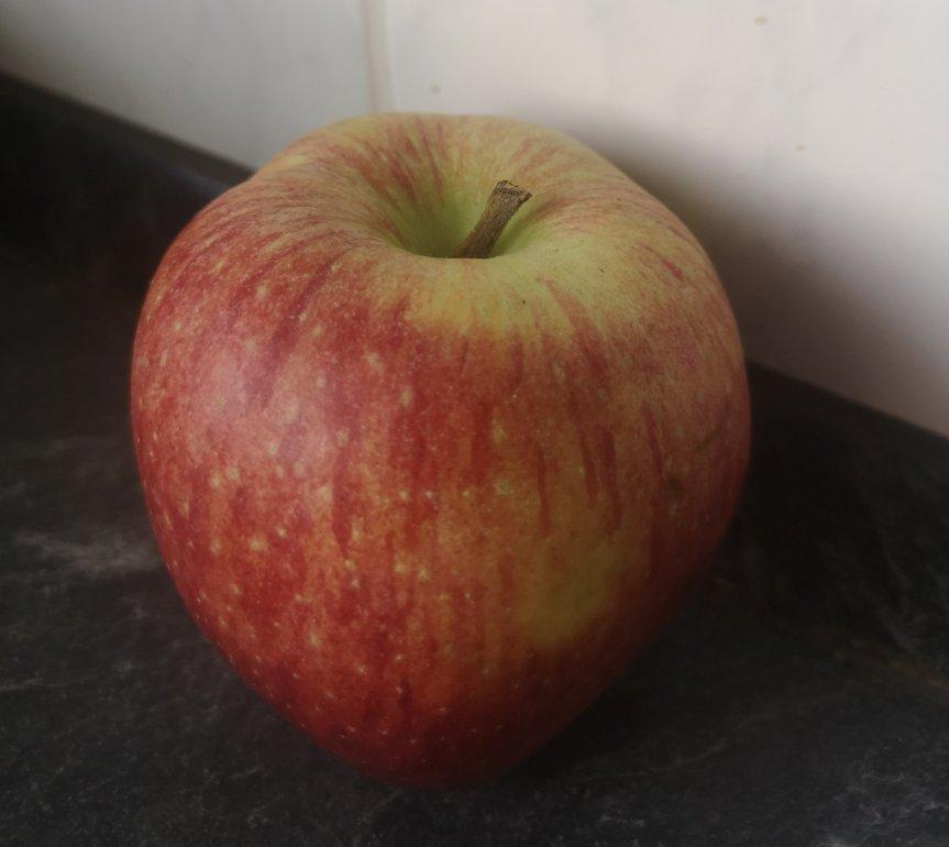 Von Homeschooling, Erdbeerpflanzen und dem Lieblingsapfel; Unsere Woche 1 von X
