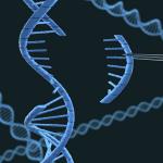 がんゲノム医療中核拠点病院ー選定の不可解