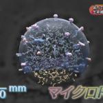 Eテレ:サイエンスZERO「生命維持の要 エクソソーム」
