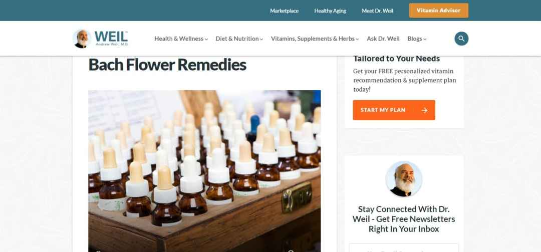 Bach Flower Remedies - Article 2