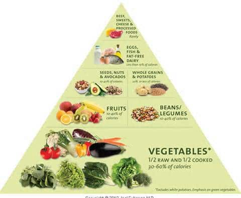 nutrient dense food pyramid